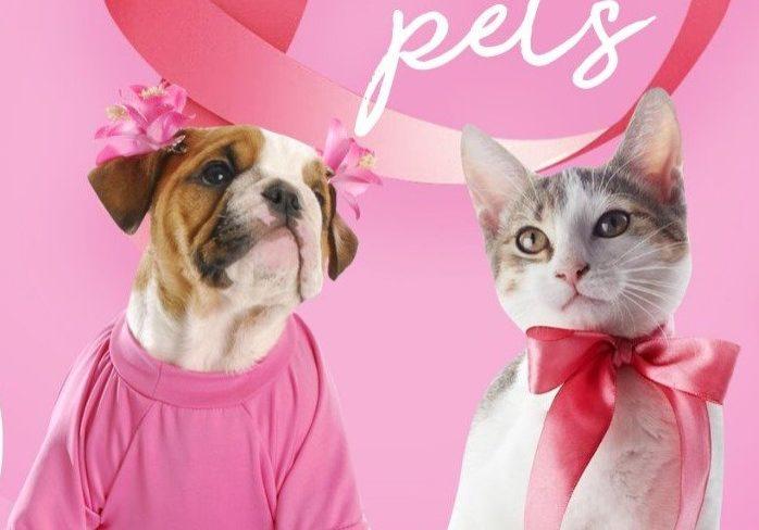 pets-cancer-de-mama